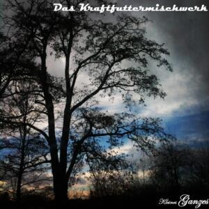 Albumcover ein dunkel gehaltener Baum im Vordergrund. Ein Sonnenuntergang mit blauem Himmel und Schleiherwolken im Hintergrund. Ränder in den Ecken vignetiert.