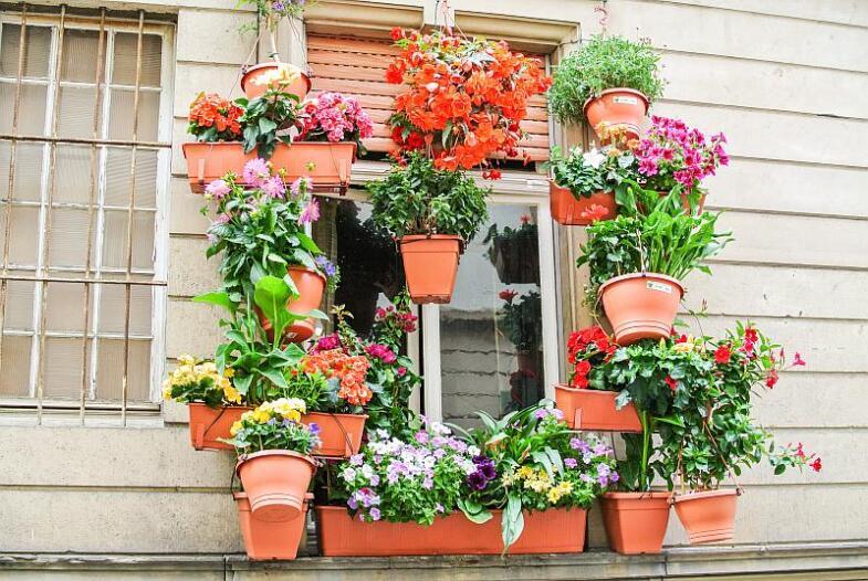 Reich mit Blumen behängtes Fenster im Unteren Faulen Pelz