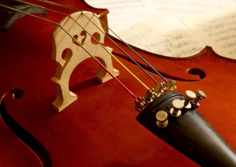 Blick auf ein Cello, von der Seite. Im Fokus sind Steg und Seiten.