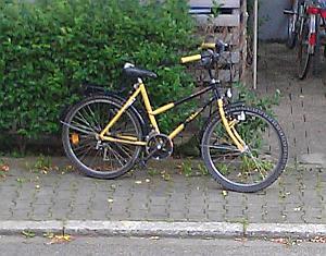 schwarz-gelbes Trecking-Fahrrad, welches an einer Hecke lehnt