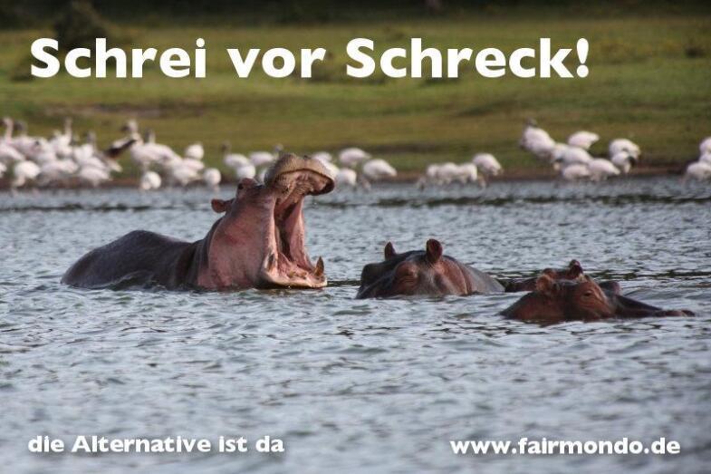 Werbepostkarte von fairmondo.de die an eine Werbekampagne von Zalando anlehnt mit Slogan Schrei vor Schreck