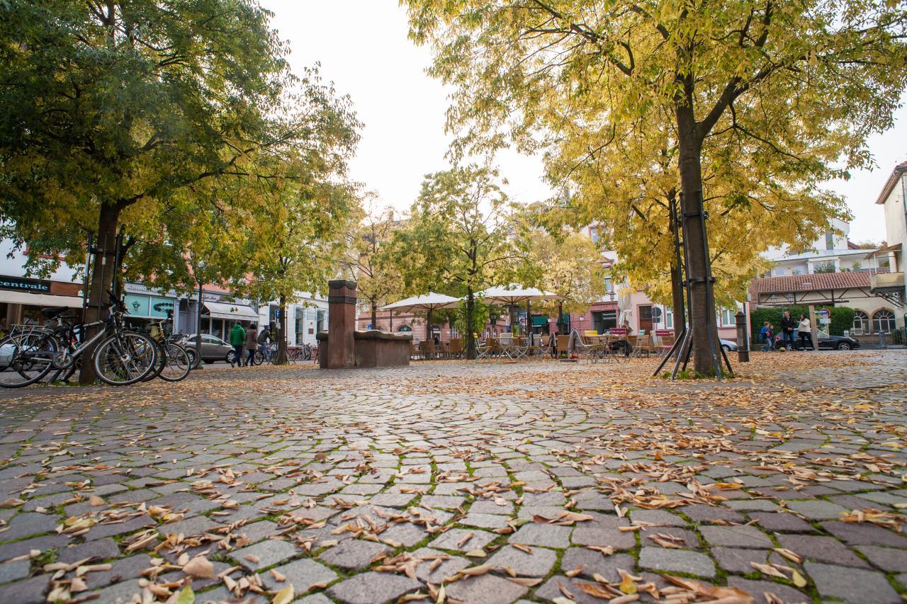 Blick im Weitwinkel auf den Marktplatz in Neuenheim. Die Bäume sind herbstlich bunt und einige Blätter liegen am Boden.