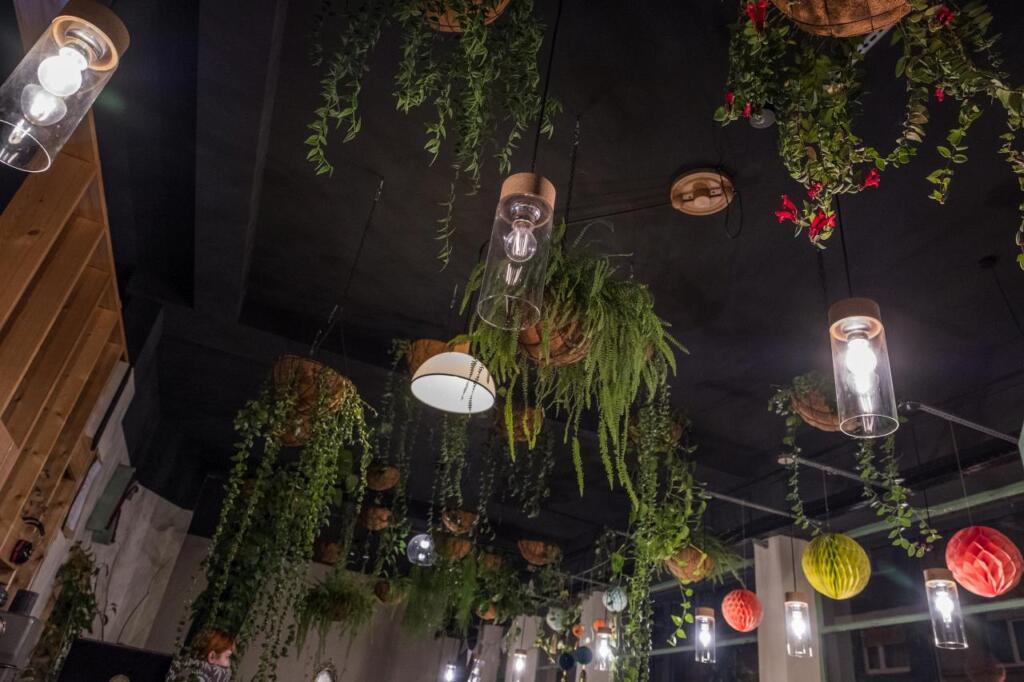 Blick an die Decke. Dort hängen neben Lampen auch jede Menge Grünpflanzen.