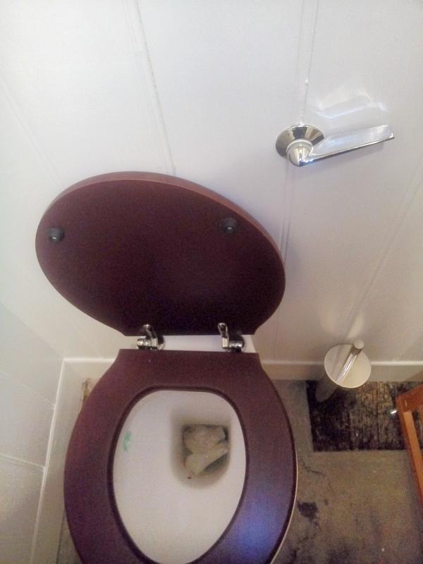 benutzte Toilette von oben, Klobürste und Hebel zum spülen