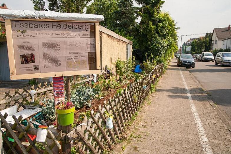 Gartengrundstück an einer Straßenkreuzung mit Schild zur Erklärung