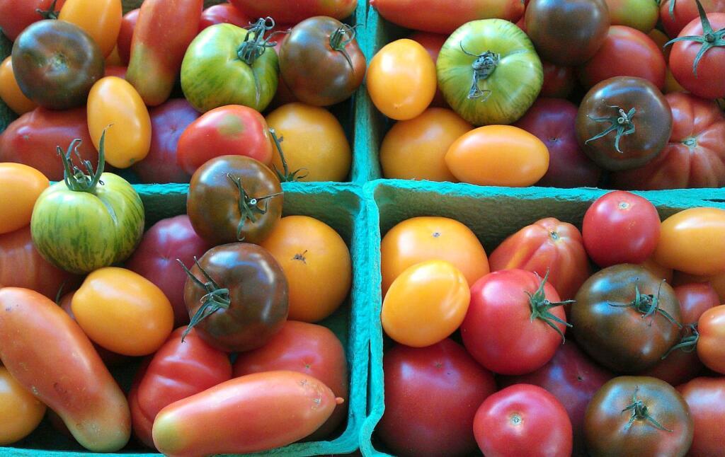 vier Behälter mit Tomaten unterschiedlicher Sorten und Farben.